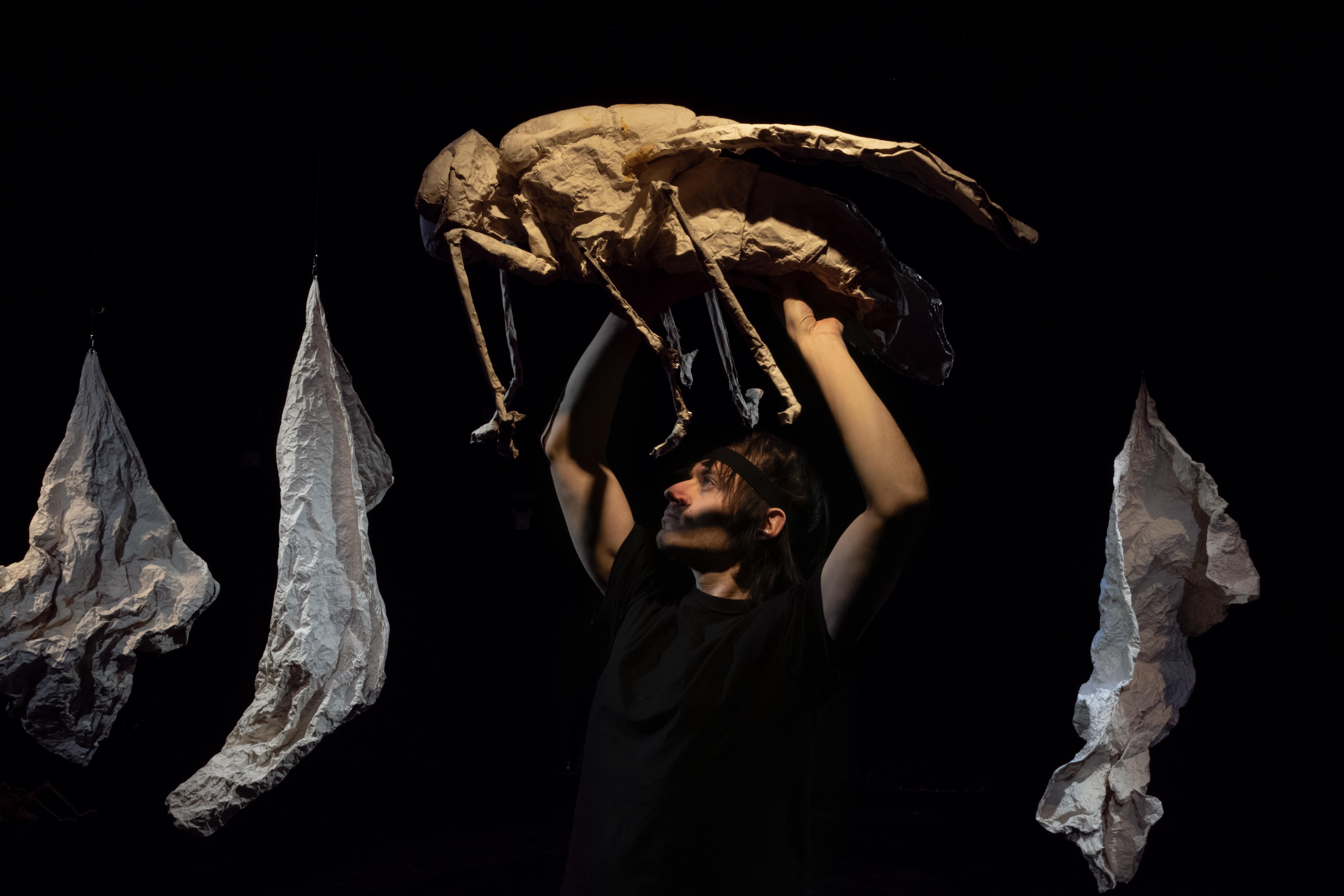 ein Spieler hält eine große Fliege über seinem Kopf - an den Seiten sieht man formbare weiße Folien hängen