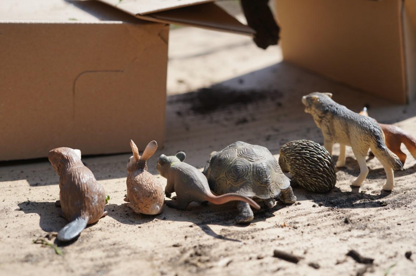 Ein Biber, ein Hase, eine Maus, eine Schildkröte, ein Igel, ein Wolf und ein Fuchs - kleine Waldtiere aus Hartgummi sitzen vor einer Brücke aus Kartons.